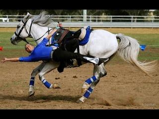 Trick Riding/Mounted Archery - Animals