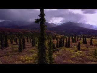 Alaska - epic drone film fall colors in 4k