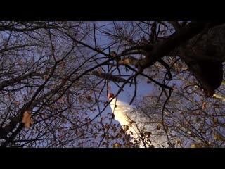 Борьба с пожаром на территории войсковой части п. Желтухинский
