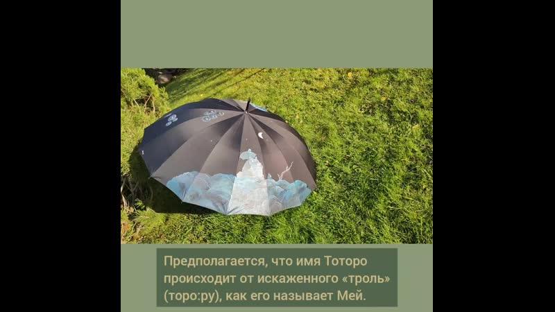 Зонт с росписью по мф Миядзаки Мой сосед Тоторо