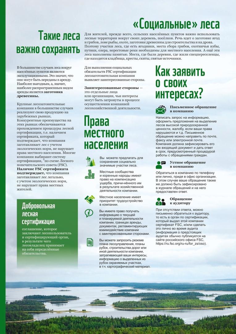 Как сохранить свой лес?, изображение №5