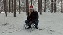 Рождественское QRP 2020. Сказочный лес. Радиосвязь с друзьями.