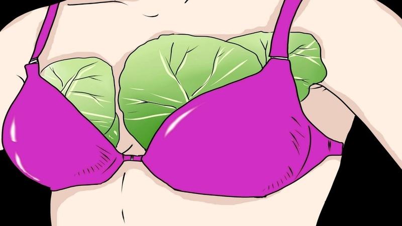 Овощ, вытягивающий хворь подобно магнитам: как использовать листья капусты, если болит грудь