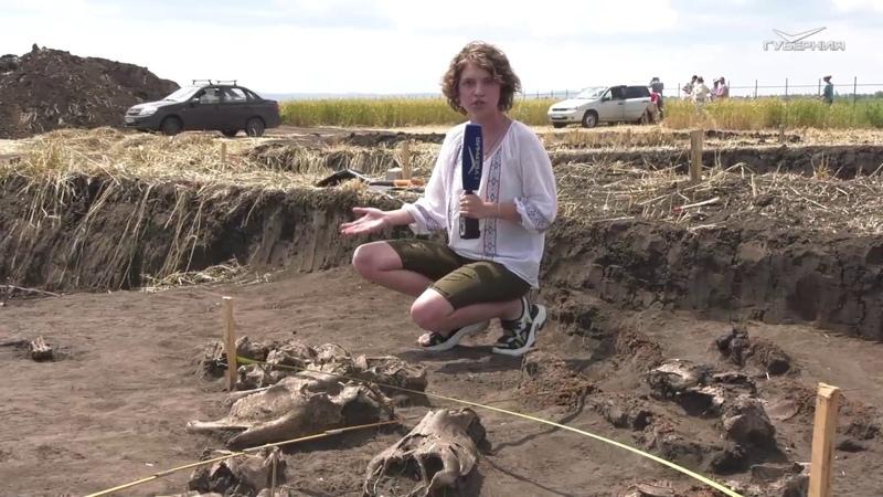 В Красноярском районе обнаружены средневековые артефакты