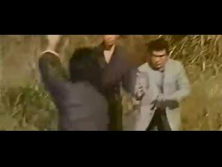 Сила айкидо (1975) (Toei)