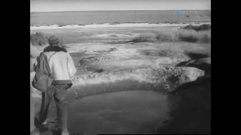 Летопись полувека Год 1947