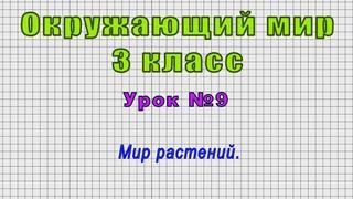 Окружающий мир 3 класс (Урок№9 - Мир растений.)