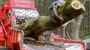 World's Amazing Modern Wood Chipper Machine Working - Extreme Wood Processor Big Tree Shredder Easy