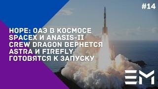 NASA и Artemis-I, HawkEye - клиент SpaceX, запуск ANASIS, Boca Chica, успехи Firefly: NEWSWEEK#14