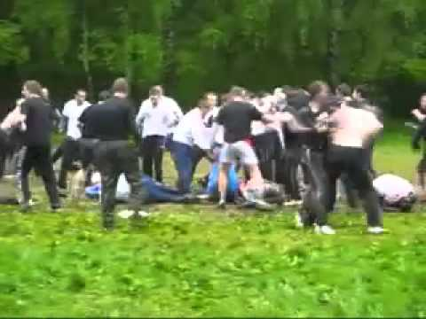 масовая драка фанатов Динамо против Зенит