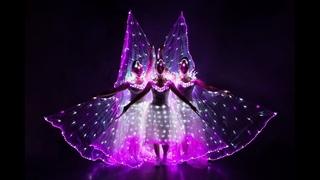 Световое шоу, светодиодное шоу, шоу с крыльями, светодиодные крылья 8(925)303-51-36