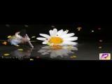 Alex Leger feat. Ange ~ Love Me Deep Inside (Ilya Soloviev Radio Mix)