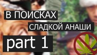 В ПОИСКАХ СЛАДКОЙ АНАШИ  #1 | #сериал