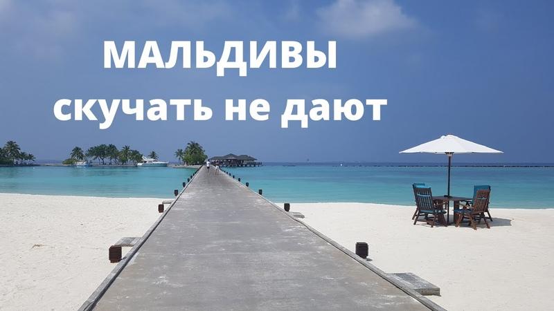 МАЛЬДИВЫ 2020 Paradise Island Resort and Spa потрясающий отдых и развлечения ВСЁ ВКЛЮЧЕНО