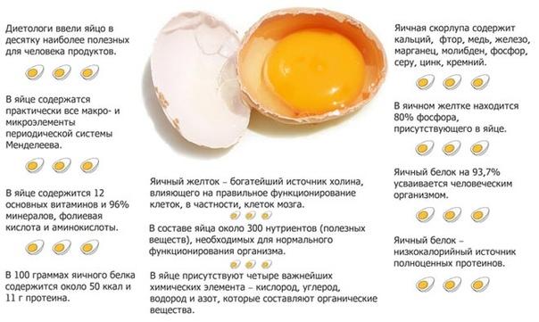 Яйцо Польза Похудение. Можно ли есть вареные, жареные яйца или яичницу при похудении?