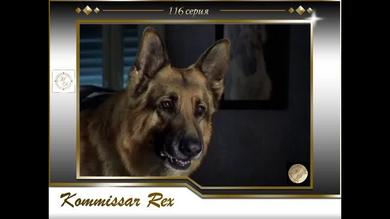 Komissar Rex 10x02 Ein Mann ohne Gedächtnis Комиссар Рекс 116 серия Человек без памяти
