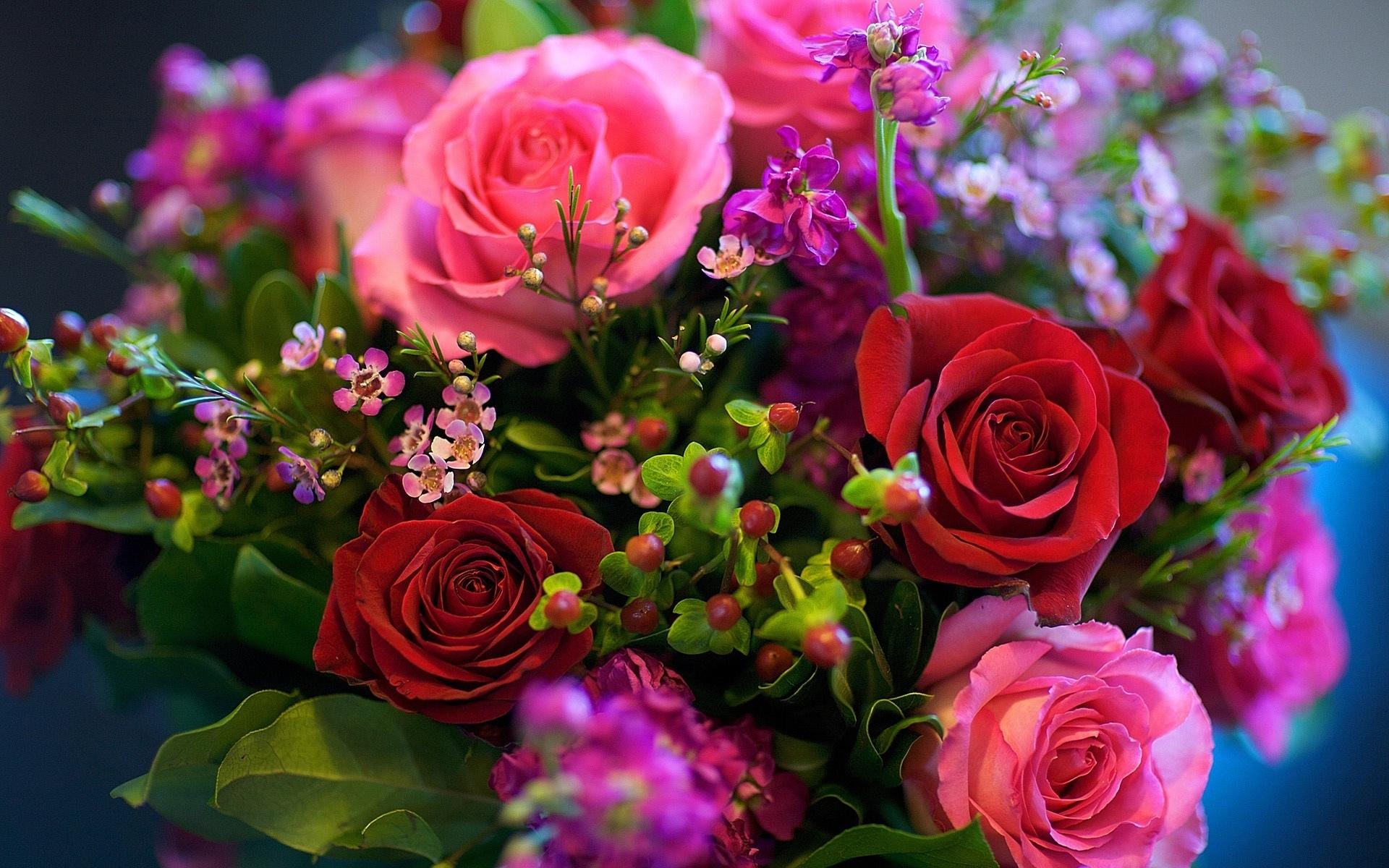 розы в Нижнем Новгороде