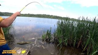Поплавочная рыбалка на карася. Сибирское озеро рядом с городом. С утра не клевало, но потом..!