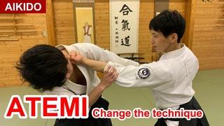 【Special technique Aikido】Use ATEMI to change technique - Shirakawa Ryuji shihan