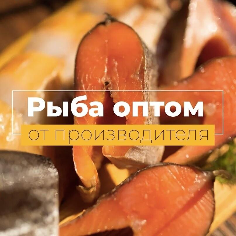 Лиды по 285 рублей на покупку рыбу оптом, изображение №15