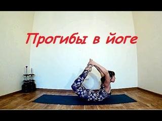 Прогибы в йоге. Как сделать позу лука, Урдхва Дханурасана, Вьяграсана