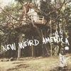 New Weird America