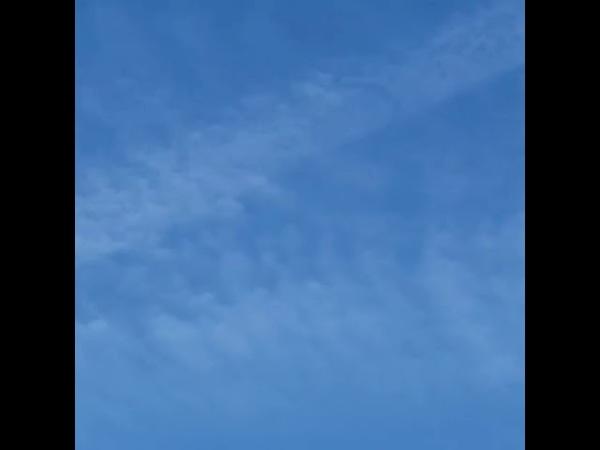 Сигарообразные НЛО или самолеты?