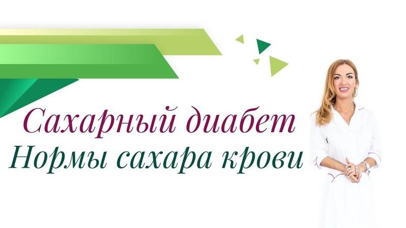 Школа Правильного Питания Ольги Павловой
