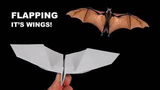 How to make a paper plane fly like a bat. Incredible Paper Airplanes