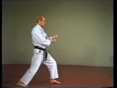 Kizami Zuki Jab Punch