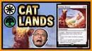 🐱 FELIDAR RETREAT is an AMAZING card nobody is playing! 【 MTG Modern 】