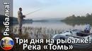 Три дня на рыбалке! Река Томь! Щука ,окунь, посиделки у костра!