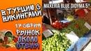 В ТУРЦИЮ С ВИКИНГАМИ 17 серия Рынок около отеля Maxeria Blue Didyma 5 Рынок в Турции 2020