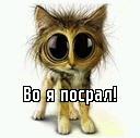Личный фотоальбом Димы Ермошкина