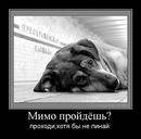 Персональный фотоальбом Кристины Поповой