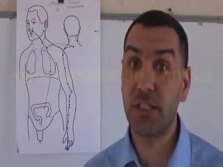Меридиан Толстого кишечника, Ян, центростремительный