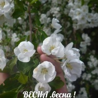 Архипова Светлана (Фёдоровна)