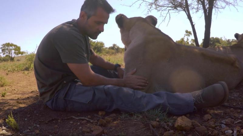 Интересная работа зоолога Кевина Ричардсона