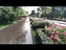 Красота после дождя