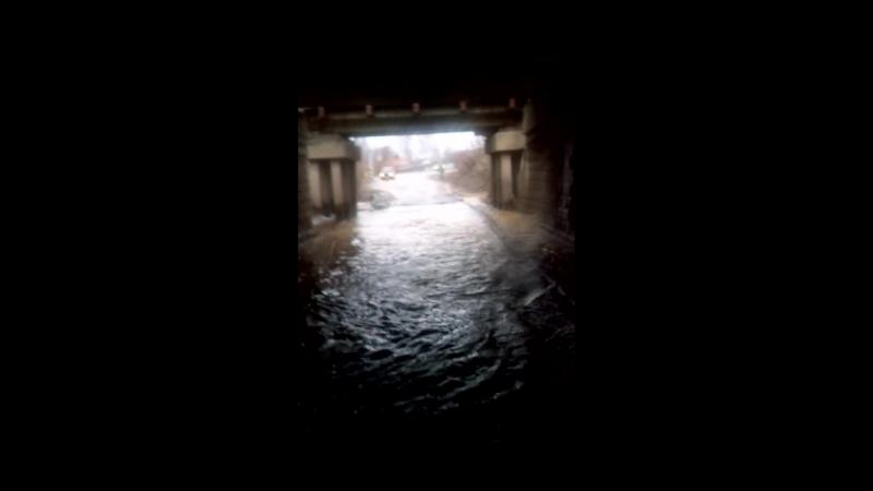 балезино жд мост