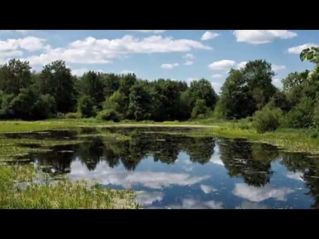 За тихой рекой - группа Калина folk