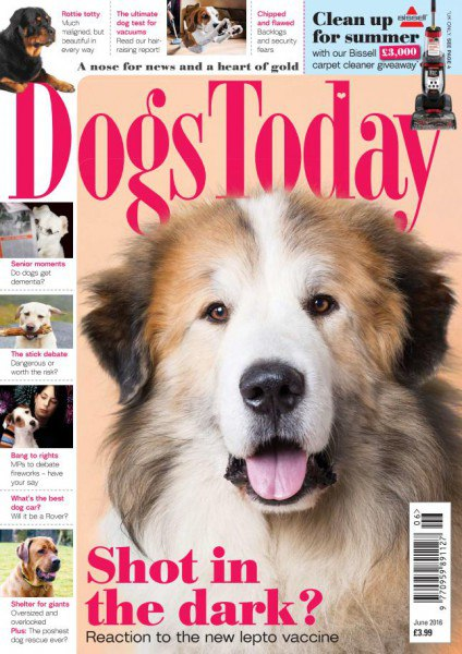 Dogs Today June 2016