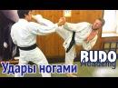 Тренировка ударов ногами. Денис Клюев