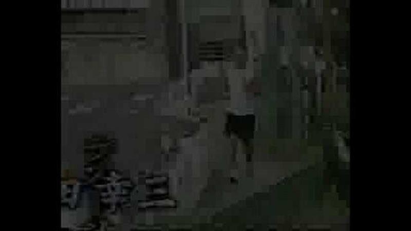 Tribute to Takeda Kozo - REAL - Low Kick King