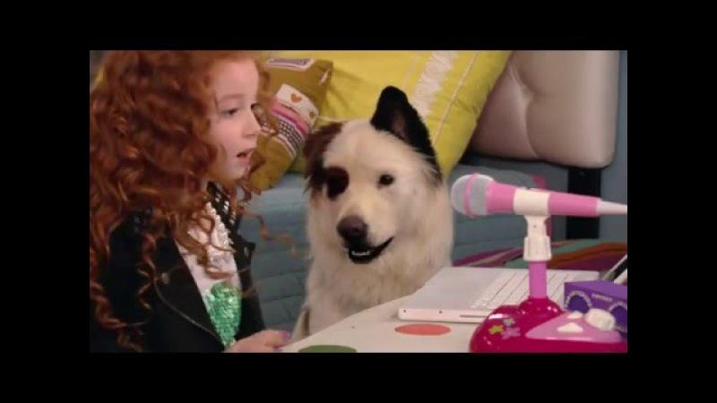 Собака точка ком (Сезон 2 Серия 8)