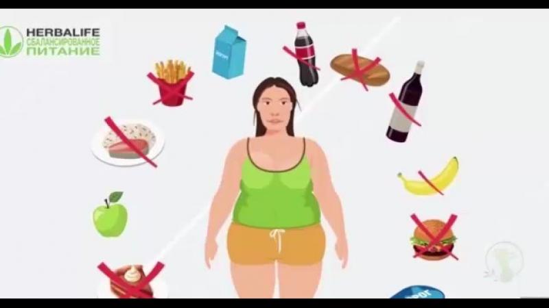 Школа питания гербалайф почему не работают диеты