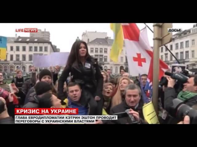 Lifenews Мнение Царев 30 01 2014