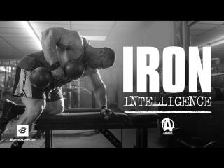 Iron intelligence | evan centopani's muscle-building plan. программа тренировок от ifbb pro эвана центопани!