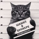 Персональный фотоальбом Димы Иванова