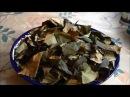 Чай из ферментированных листьев Яблони